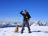 Gipfelhunde